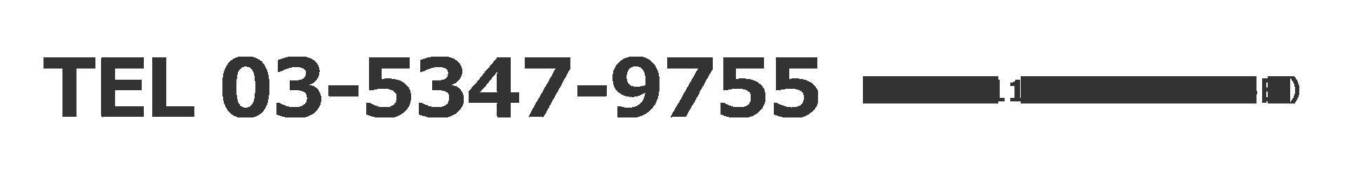 TEL:03-5347-9755 [受付時間] 11:00〜19:00(平日)